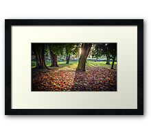 Picnic In The Park Framed Print