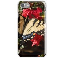 Natures Timing iPhone Case/Skin
