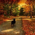 A lab in Fall by MarianBendeth
