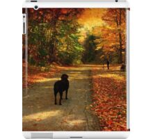 A lab in Fall iPad Case/Skin
