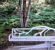 A White Bench by Margaret Stevens