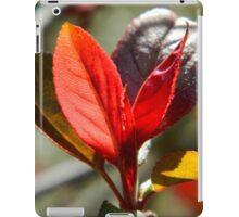 Springtime Neighborhood Walk -1 iPad Case/Skin