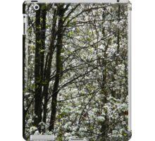 Springtime Neighborhood Walk - 4 iPad Case/Skin