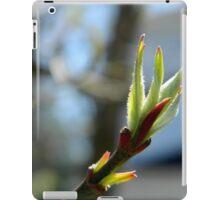 Springtime Neighborhood Walk - 5 iPad Case/Skin