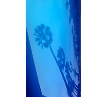 PALM TREE BLUE REFLECTIONS Photographic Print