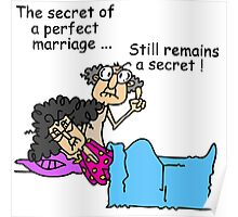 Humor and Sarcasm Secret of a Perfect Marriage Poster