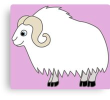 White Buffalo with Horns Canvas Print