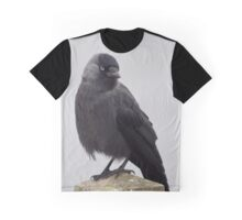Jackdaw Graphic T-Shirt