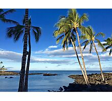 Tropical Breeze Photographic Print