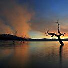 Smoke Rises by Donovan Wilson