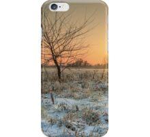 Tree in evening iPhone Case/Skin