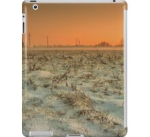 Snow-covered meadow iPad Case/Skin