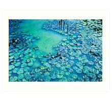 Water Lily Pond - Sukhothai Ruins Art Print