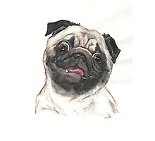 Puggy Person Photographic Print