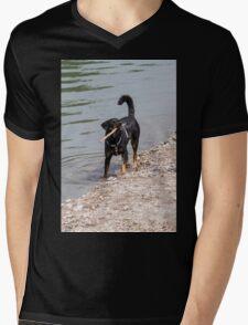 dog play at lakedog play at lake T-Shirt