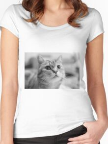Lovely Cat Pet Women's Fitted Scoop T-Shirt
