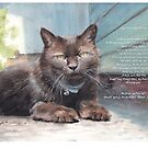 black-brown cat watercolor by Mike Theuer