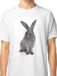 Funny furry gray rabbit Classic T-Shirt