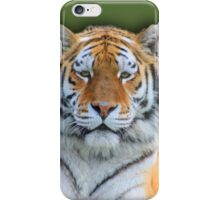 the queen of the forest iPhone Case/Skin