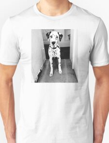 Dobby the Dalmation in the Doorway Unisex T-Shirt