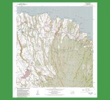 USGS TOPO Map Hawaii HI Haiku 349236 1983 24000 One Piece - Short Sleeve