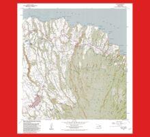 USGS TOPO Map Hawaii HI Haiku 349236 1983 24000 Kids Tee