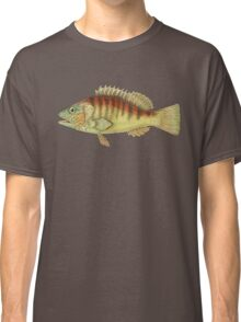 Banded Sea Perch Classic T-Shirt