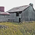 """""""Nostalgic Old Barn, the Back Side""""... prints and products by © Bob Hall"""
