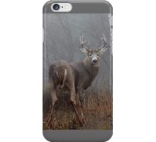 Buck - White-tailed Buck iPhone Case/Skin