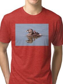 """""""Mom!...Timmy won't move over!"""" Pied-billed grebes Tri-blend T-Shirt"""