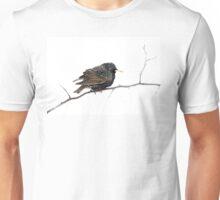 Hello Starling T-Shirt