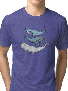 Three hand-drawn whales-friends Tri-blend T-Shirt