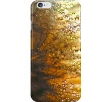 Dandelion and Rain Drops Closeup iPhone Case/Skin