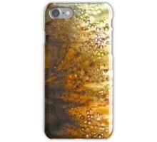 Dandelion and Rain Drops Closeup iPhone Case/Skin