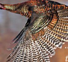 As God as my wtness....Flying Wild Turkey Sticker