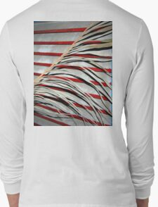 Carl's Florida Flag Long Sleeve T-Shirt