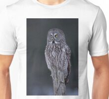 Great Grey Owl Unisex T-Shirt