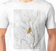 Evening Grosbeak - Algonquin Park Unisex T-Shirt