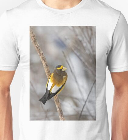 Evening Grosbeak - Algonquin Park Unisex T-Shirt