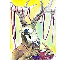 Knitting Deer Photographic Print