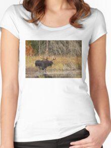 Smiling Moose, Algonquin park Women's Fitted Scoop T-Shirt