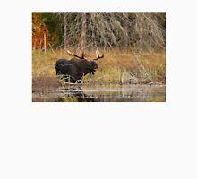 Smiling Moose, Algonquin park Unisex T-Shirt