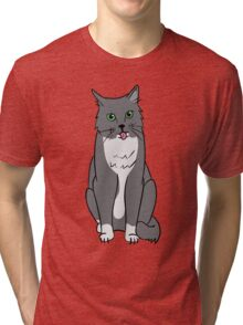 The Kitty Cat Tri-blend T-Shirt