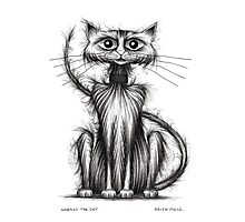 Norman the cat Photographic Print