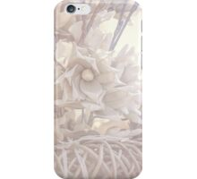 Silver Vintage Dream. Triptych iPhone Case/Skin