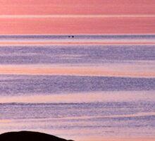 Lines in the Sea Sticker