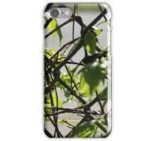 In the fence iPhone Case/Skin