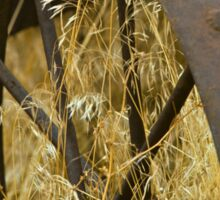 Rusty Old Wheel and Yellow Grasses Sticker