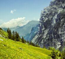 Lauterbrunnen Valley in Bloom Sticker