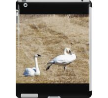 Swan Yoga iPad Case/Skin